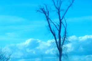 Fotografia_Digital_1_thumb